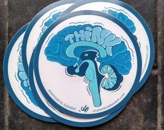 THINK Anatomical Brain Vinyl Sticker