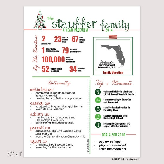 "Custom ""Year in Review"" Infographic-style family newsletter -- Customized, Fun, informative -- send with holiday cards"