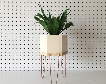 Mini Succulent Hexagon Planter with Copper Legs | Made in KC MO USA | Planter