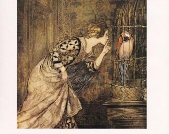fine art print Arthur Rackham vintage illustration Mary Colven Parrot Some British Ballads home decor 8.5x11.5 inches