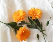 Set of 3 Paper English Marigolds- Paper Flowers- Paper Anniversary- 1st Anniversary- Paper Flower- Paper Decoration- Crepe Paper Flowers