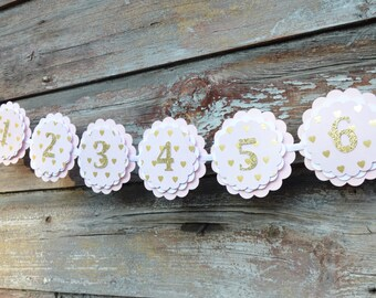 Numbered Picture Banner - Photo Banner - Party Banner - Picture Timeline - Event Decor - Party Supplies