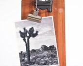 Vintage Art Photography / Joshua Tree National Park / Original Vintage Print / Large Format 8x10