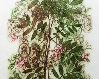 Etching / limited edition original etching (printmaking / graphic art) / original print / original art / botanical print - 'Rowan I'