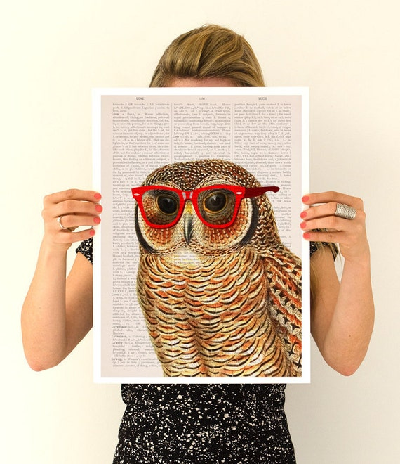Cool Owl poster,  ,funny animal art, Wall art, Nursery art , Giclee Animal art, poster print ,digital ANI035PA3