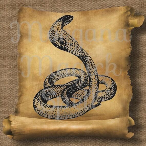 Cobra Snake  Royalty Free Clip Art