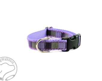 "Purple Squared Dog Collar - 3/4"" (19mm) Wide - Choice of size & style - Quick Release Buckle or Martingale Dog Collars"