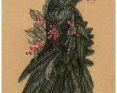 The Quietus of Munin - 8 x 10 reproduction of original drawing- Raven artwork