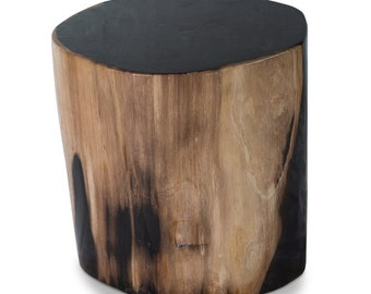 gramercy petrified wood stool