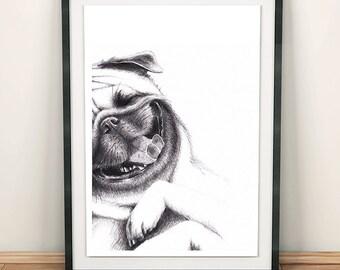 Happy little pug print. Pug illustration. Laughing pug. Pet illustration. Pug in pencil. Dog print. Pug. Classic.