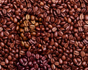 Sumatra Lintong Opung Roasted Coffee Beans