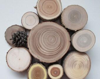 Forest Blocks, Wood Blocks, Building Blocks, Natural Toys, Waldorf Toy