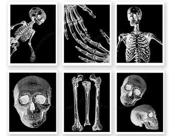 Halloween Wall Decor, Skull and Bones art prints set of 6, Halloween Decoration, Halloween Decor, Black White wall art,  Skeleton Art