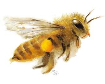 Honey Bee watercolor Giclee Print. Nature Illustration. Honey Bee, Flying bee, Lovely Bee art, Honey Bee with Pollen
