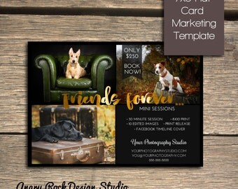 Friends Forever - Pet Photography Mini Session - Photoshop Marketing Template - INSTANT DOWNLOAD