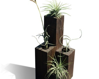 Metro Tower Urban Air Plant Holder // PLANTS INCLUDED // Free Shipping