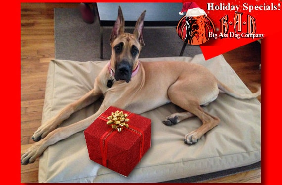 Extra Large Dog Beds For Great Danes