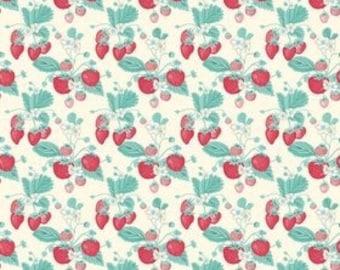 Shabby Strawberry Cream C6040