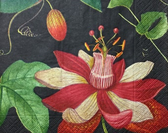 "3 Decoupage Napkins, Midnight Garden Black 13"" x 13"""