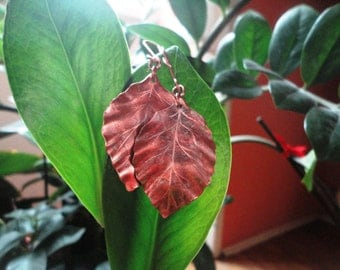 Handmade copper earrings with beech leaves in ancient Celtic style