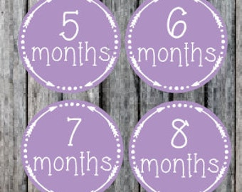 Monthly Milestone Stickers, Baby Month Stickers, Baby Girl Milestone stickers, Baby Boy Milestone Stickers, Bodysuit stickers,Onesie Sticker
