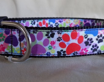 Paw Print Dog Collar, Rainbow Dog Collar, Bright Dog Collar