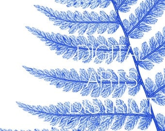 Printable Blue and White Botanical Fern in Blue Instant Download