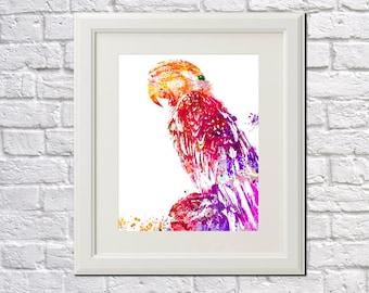 Parrot Drawing Art Print Wildlife Poster Home Decor Bird Wall Art Parrot Poster 5667