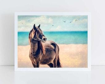 Wild Horse Photography, Beach Decor, Horse Wall Art, Equine Print, Blue Orange, Nursery Decor, Horse Photo, Assateague Island, Maryland