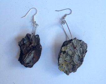 Natural Tree Bark Earrings