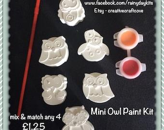 Owl paint kit