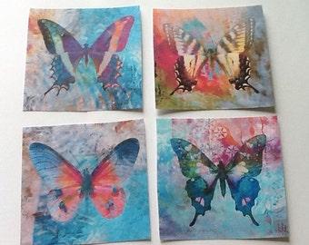 12 Enchanted Butterflies
