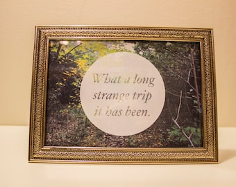 "Framed Photography & Quote - ""What A Long Strange Trip It Has Been"" Grateful Dead"