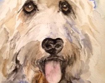 Goldendoodle watercolor/ custom portraits