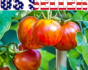 30+ Tigerella Tomato Seeds Heirloom NON-GMO Indeterminate Productive Low Acid