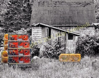 Maine Lobsterman's Shack. B&W with Selective Color.
