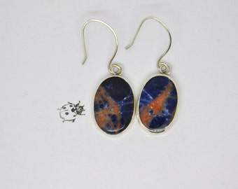 Stunning Sodalite Earrings