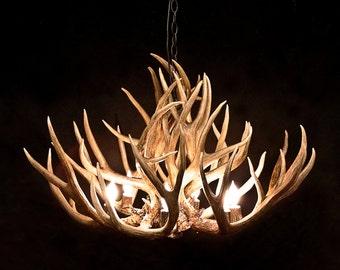 Muledeer antler chandelier