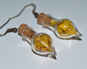 Real Dried Magical Yellow Chrysanthemum Flower Glass Vial Earrings