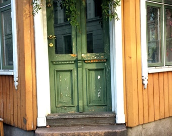Doorway in Norway (Oslo)