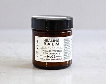 HEALING SKIN BALM, Nọ 02, Eczema Balm, Universal Healing Balm, Skin Rash, Skin Salve, Ointment, Skin Bruises, Scars, Skin Rash, Herb Balm