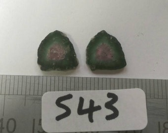 Pair of natural Watermelon tourmaline slices.