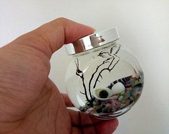 Marimo Pet Aquarium Kit - Marimo Nano Moss Ball/Cat's Eye Gravels/Sea Fan/Tiny Seashells,Gifts For Children