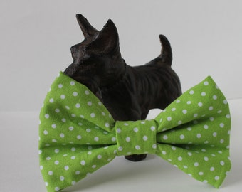 Green and White Polka-dot Dog Bow Tie