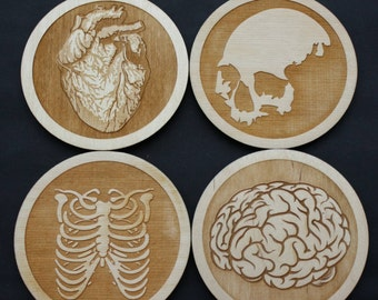 Anatomical Inspired Coaster Set