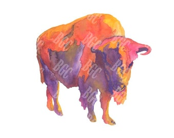 Arizona Sky Buffalo - Horizontal Print