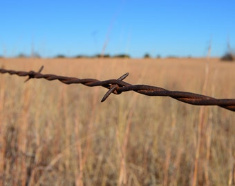 Oklahoman Barbed Wire Fence Country Photography