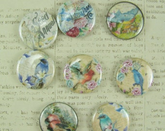 Button Magnets, Bird Magnets, Refrigerator Magnets, Office Magnets, Magnet, Nature Magnet
