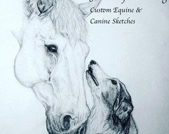Grand Opening Special! Custom Equine Sketch