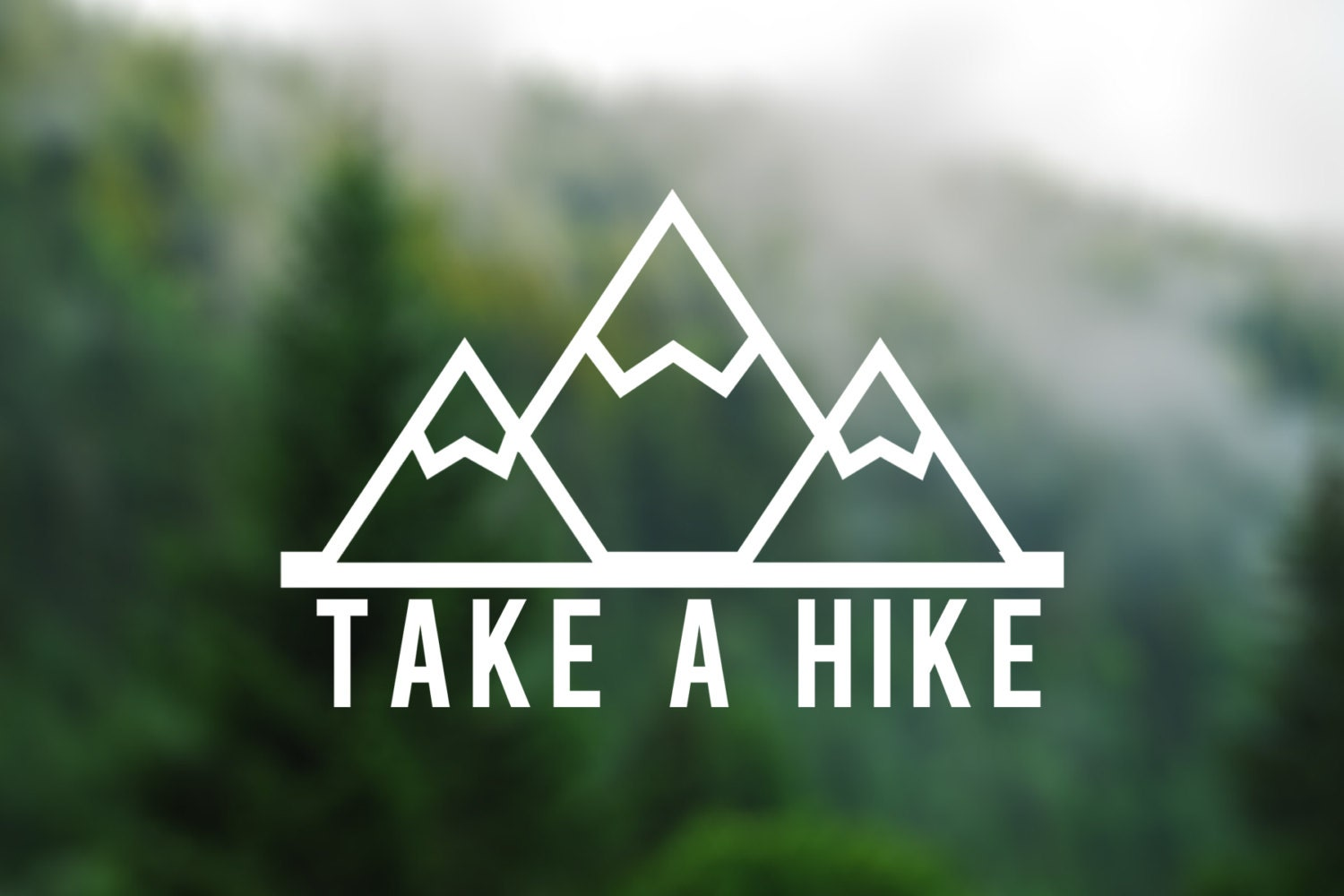 Decal Take A Hike Vinyl Decal Car Window Decal Laptop